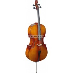 Stagg VNC-4/4L - Violoncelle 4/4 en érable avec housse