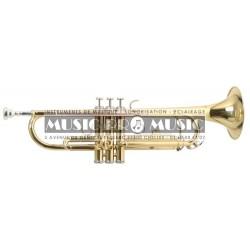 Roy Benson RB701050 - Trompette TR-101