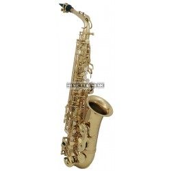 Roy Benson RB700601 - Saxophone alto AS-202