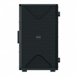 Definitive Audio VORTI-110-DSP - Caisson de basse actif DSP 500W
