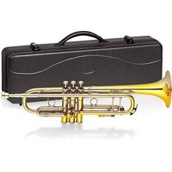 Delson V-TROM - Trompette Bb avec étui