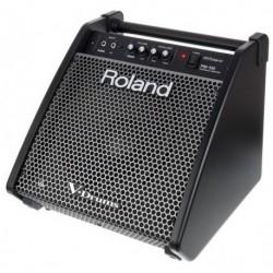 Roland PM-100 - Ampli pour batterie electronique