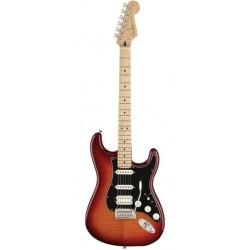 Fender 144562531 - Guitare électrique Player Stratocaster HSS Plus Top Aged Cherry Burst