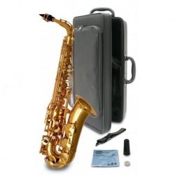 Saxophone alto d'étude + étui (tarif/mois dégressif)
