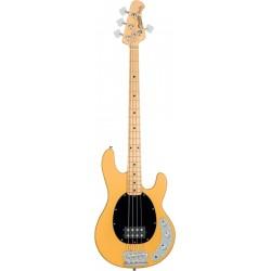 Sterling by Music Man RAY24CA-BSC-M1 - Basse electrique active Stingray Classic Butterscotch manche érable corps acajou