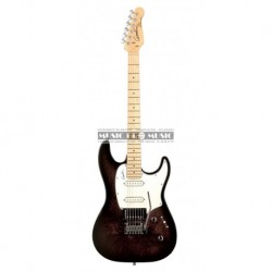 Godin GO034055 - Guitare électrique Session BK Tr MN